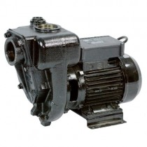 Piusi E300 AC Fuel Transfer Pump
